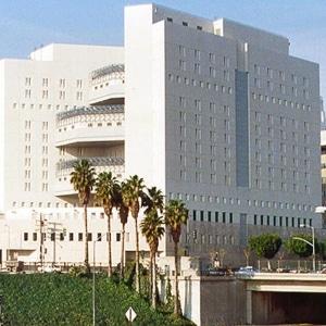 Los Angeles MDC