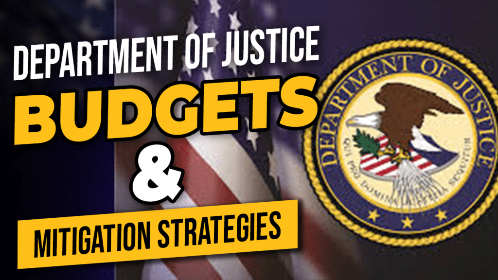 Budgets and Mitigation Strategies