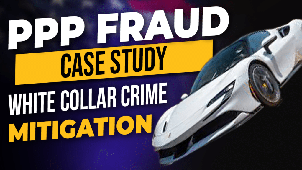 PPP Fraud